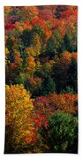 Autumn Leaves Vermont Usa Beach Towel