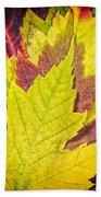 Autumn Maple Leaves Beach Sheet