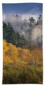 Autumn Mists Beach Towel