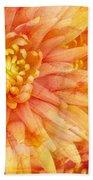 Autumn Mums Beach Towel by Heidi Smith