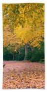 Autumn - New York City - Fort Tryon Park Beach Towel