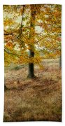 Autumn On Cannock Chase Beach Towel