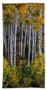 Autumn On Mcclure Pass Beach Towel