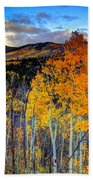 Autumn Pass Beach Towel