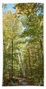 Autumn Pathway Beach Towel