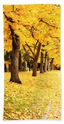 Autumn Perspective Beach Towel