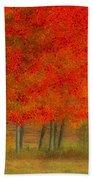 Autumn Popping Beach Towel by Karol Livote