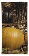 Autumn Pumpkins Beach Towel by Amanda Elwell