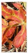 Autumn Red Beach Sheet