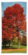 Autumn Red Beach Towel