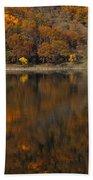 Autumn Reflections Beach Towel