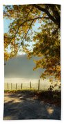 Autumn Road Beach Towel by Bill Wakeley