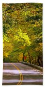 Autumn Road Beach Towel by Carol Groenen