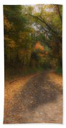 Autumn Road Beach Towel