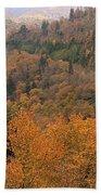 Autumn Roads Beach Towel