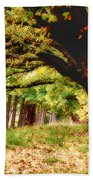 Autumn Shelter Beach Towel
