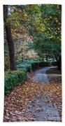 Autumn Side Walk Beach Towel