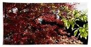 Autumn Snowball Bush Beach Towel