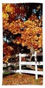 Autumn Splendor 10 Beach Towel