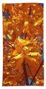 Autumn Splendor 15 Beach Towel