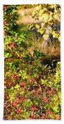 Autumn Splendor 7 Beach Towel