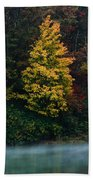 Autumn Splendor Beach Towel by Shane Holsclaw