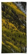 Autumn Streaks Beach Towel