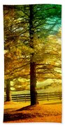 Autumn Stroll Beach Towel