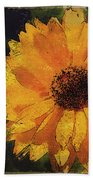 Black Eyed Susan Beach Towel