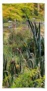 Autumn Swamp Beach Towel by Bill Wakeley