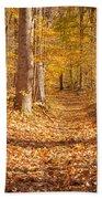 Autumn Trail Beach Sheet