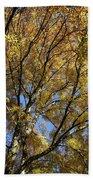 Autumn Tree Beach Towel
