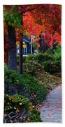 Autumn Walk In Grants Pass Beach Towel
