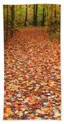 Autumn Walk In Ohio Beach Towel