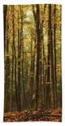 Autumn Woods Beach Towel