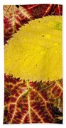 Autumn Yellow Beach Towel