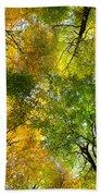 Autumnal Display Beach Towel