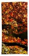 Autumn's Glory Beach Sheet