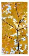 Autumn's Golden Leaves Beach Towel by Jennie Marie Schell