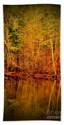 Autumn's Past Beach Towel