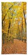 Autumn's Splendor Beach Towel