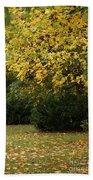 Autumn's Wondrous Colors 4 Beach Towel