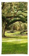 Avery Island Oaks Beach Towel