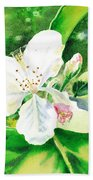 Awesome Apple Blossoms Beach Sheet