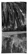 Awesome Pond 1 Beach Towel by Denise Mazzocco