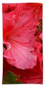 Azalea Flowers Beach Towel