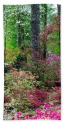Azaleas Red Maple And Magnolia Trees Beach Towel