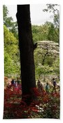 Azaleas Us National Arboretum Beach Towel