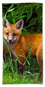 Babes In The Woods Beach Towel