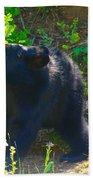 Baby Bear Cub Beach Towel